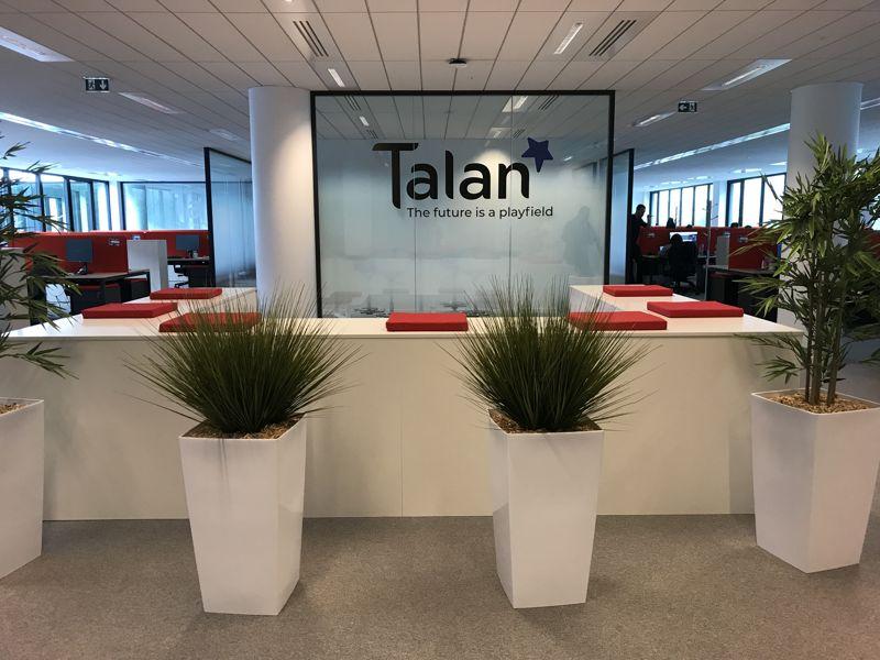 Talan - Ocellis